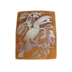 rainforest-designs-36-cameo-intaglio-sardonyx-shell-cameo