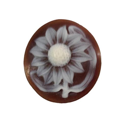 Daisy Cameo Flower