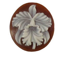 rainforest-designs-47-cameo-intaglio-sardonyx-shell-cameo.jpg