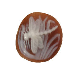 rainforest-designs-49-cameo-intaglio-sardonyx-shell-cameo.jpg